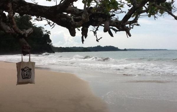 Aus Panama erreichte uns dieses idyllische Bild!